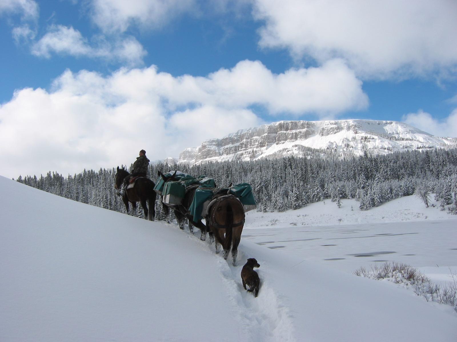M21-Wyoming