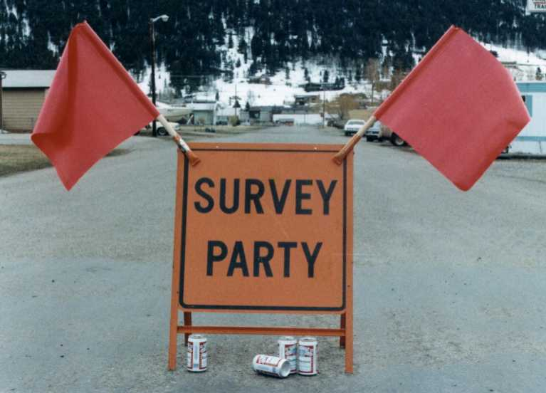 1983 SurveyParty