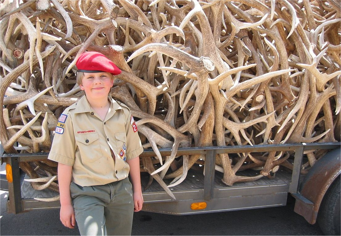 BSA Elk Antler Auction