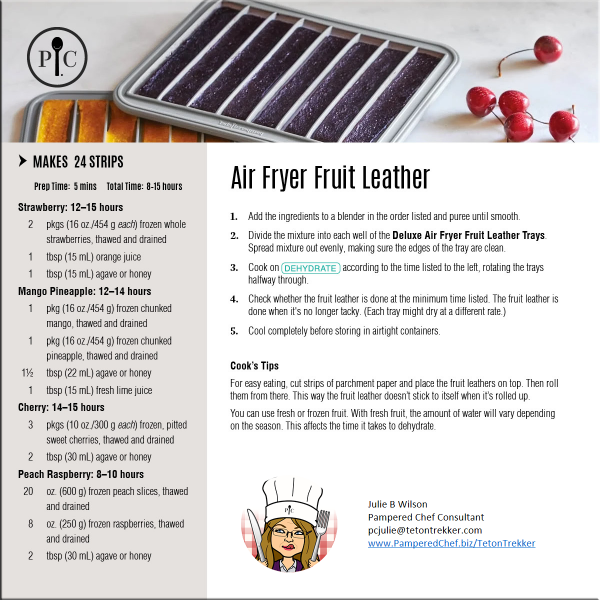 air-fryer-fruit-leather
